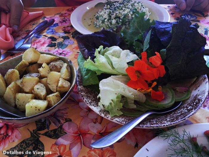 Risoto com Gorgonzola, Abobrinha, Rucula e Limão siciliano cunha restaurante drao salada