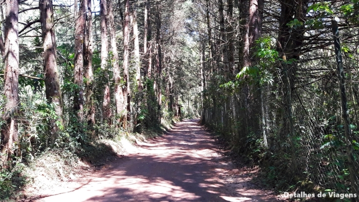 trecho da estrada cachoeira da santa clara visconde de maua