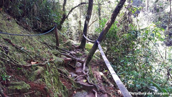 trecho da trilha sitio cachoeiras do alcantilado visconde de maua relatos de viagem