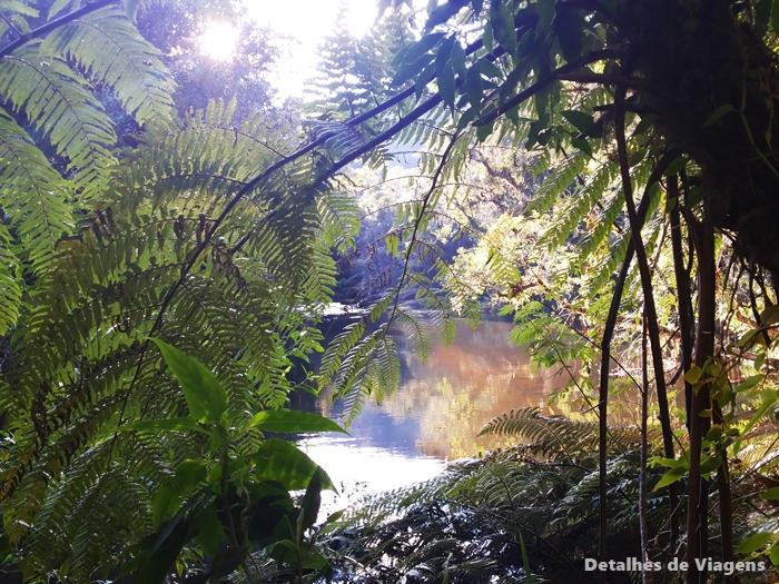 trilha rio paraibuna parque estadual serra do mar nucleo cunha passeio viagem
