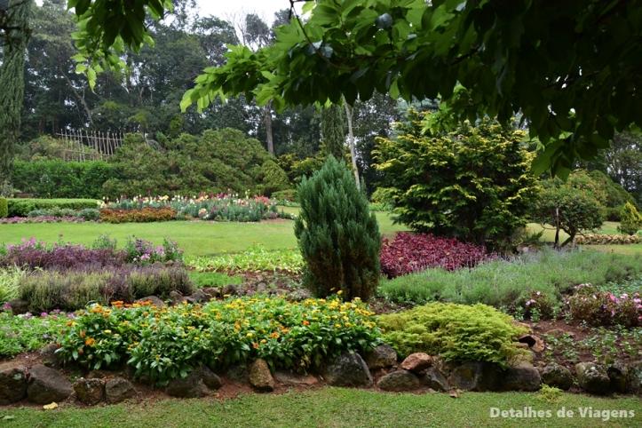 ecco parque jardim dos pinhais santo antonio do pinhal dica passeio