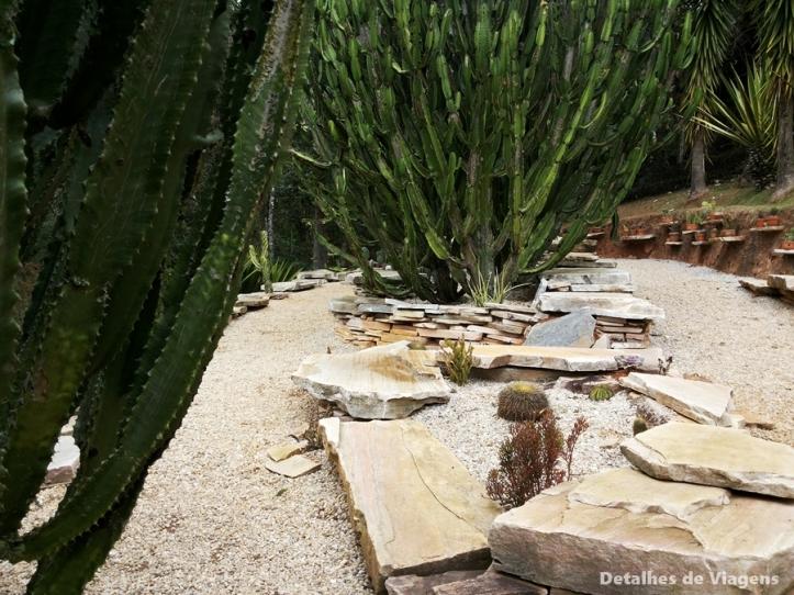 ecco parque jardim dos pinhais santo antonio do pinhal jardim desertico