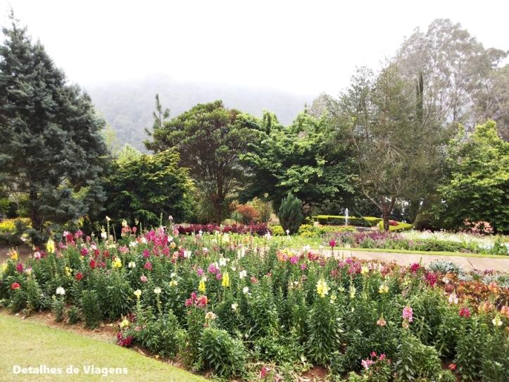 ecco parque jardim dos pinhais santo antonio do pinhal passeio contemplativo