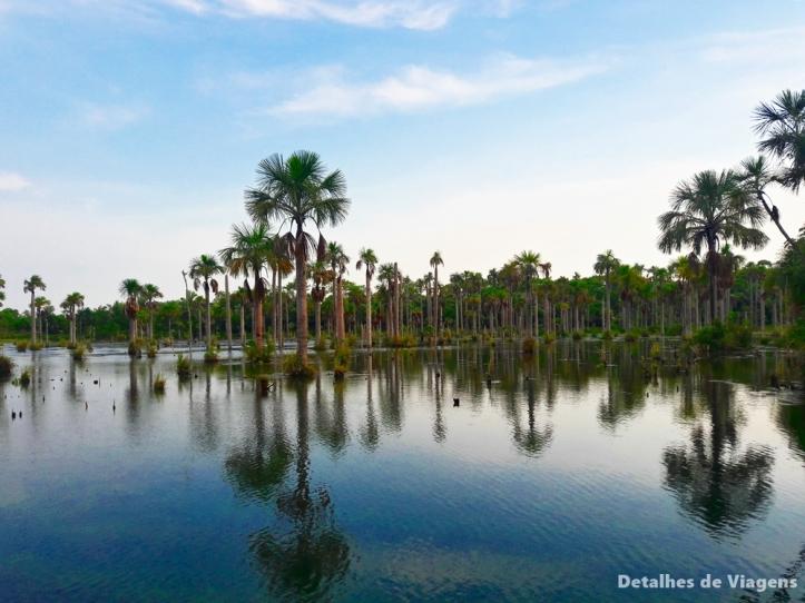 Lagoa das araras bom jardim nobres mato grosso