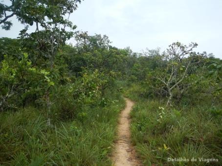 trilha caverna aroe jari chapada dos guimaraes