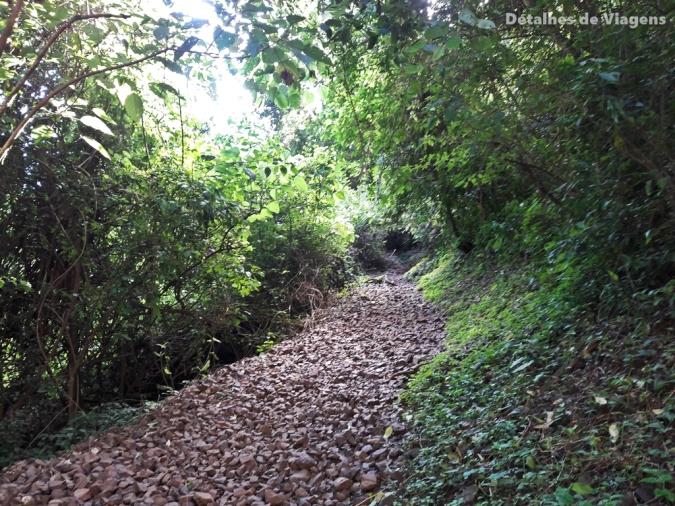 trilha cachoeira do saltao itirapina relatos viagem