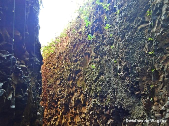 trilha para cachoeira do saltao itirapina