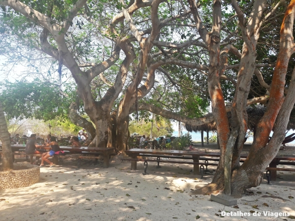 gente de mar resort isla grande cartagena almoço
