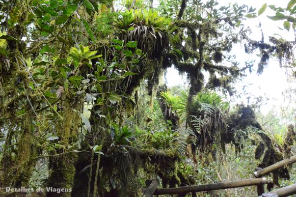 gruta dos viajantes trilha ibitipoca