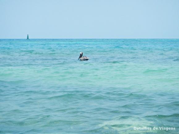 isla grande cartagena ilhas relatos