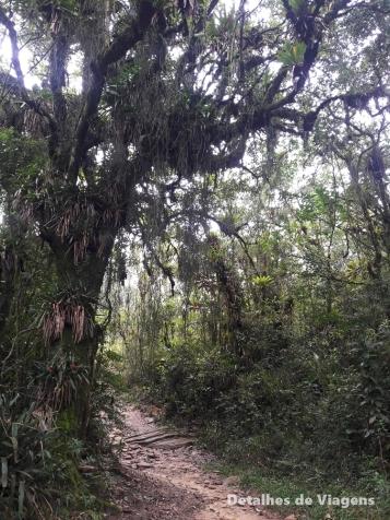 trilha gruta do piao ibitipoca