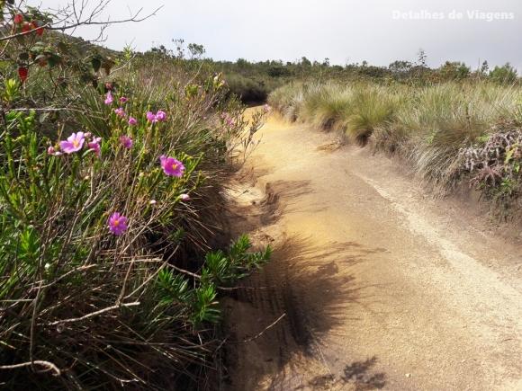 trilha pico do piao ibitipoca relatos viagem