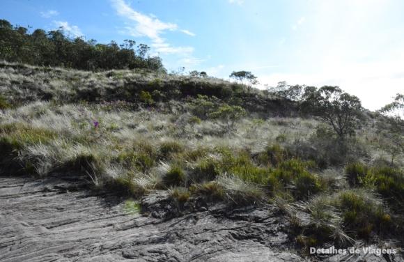 vegetacao ibitipoca trilha