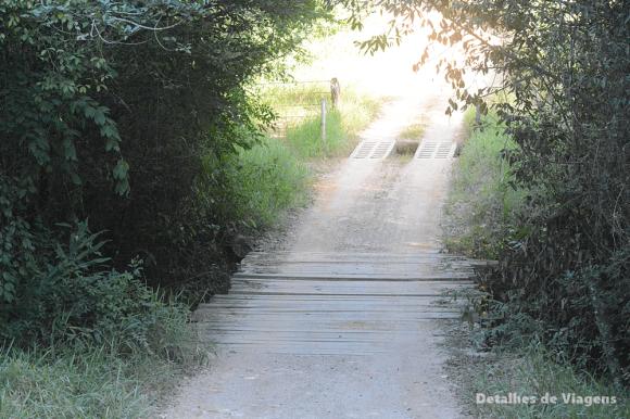 estrada parque nacional serra da canastra minas gerais 5