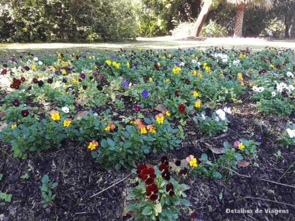 passeio jardins floridos sao paulo jardim botanico