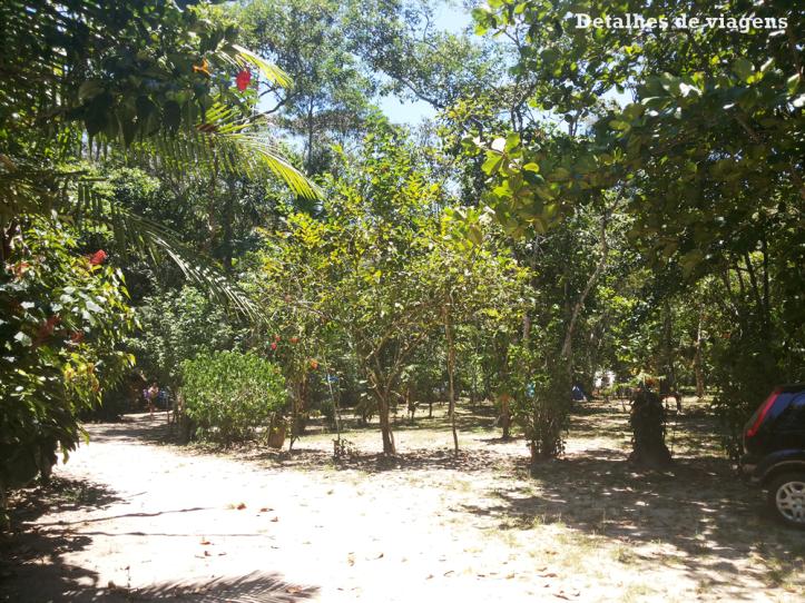 camping-caracol-ubatuba-praia-da-fazenda