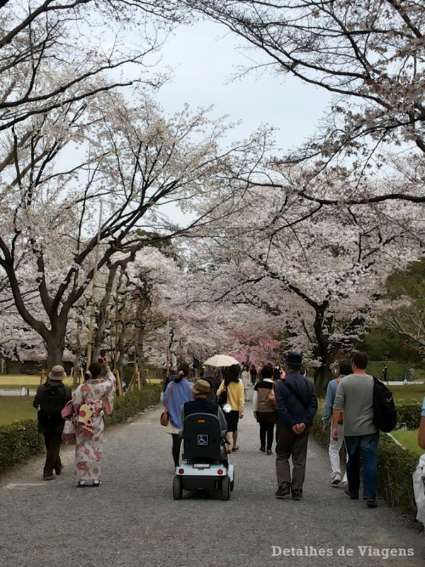 castelo-nijo-cerejeiras-nijojo-castle-kyoto-quioto-japao-relatos-viagem-roteiro-2
