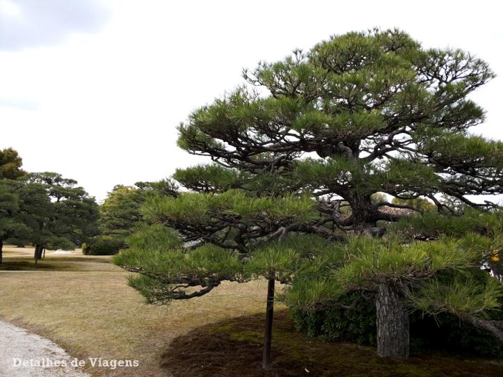 castelo-nijo-jardim-nijojo-castle-kyoto-quioto-japao-relatos-viagem-roteiro-2