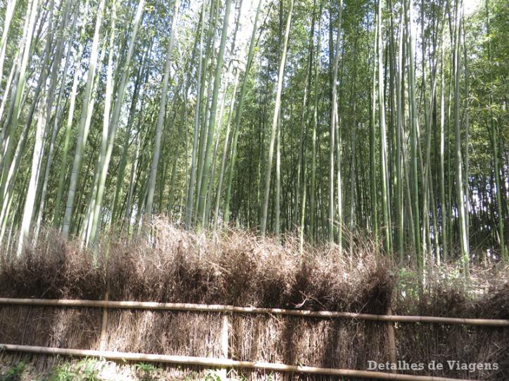 floresta-bambu-arashiyama-relatos-viagem-roteiro-dicas-japao