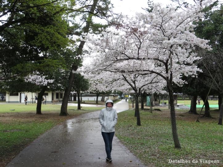 nara-park-relatos-viagem-roteiro-japao-dicas-o-que-fazer-visitar-atracoes