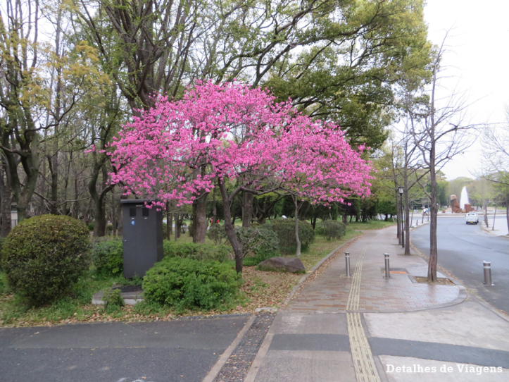 osaka castelo relatos dicas de viagem roteiro japao.png