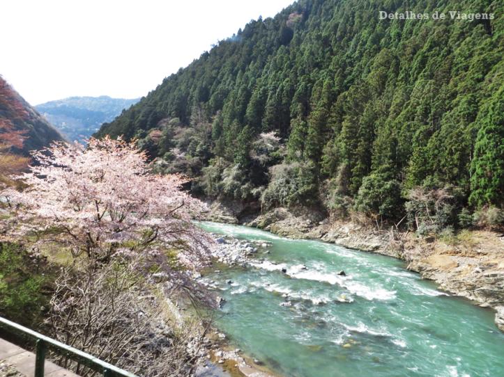 sagano-torokko-trem-cenico-arashiyama-relatos-de-viagem-japao-roteiro-dicas-3