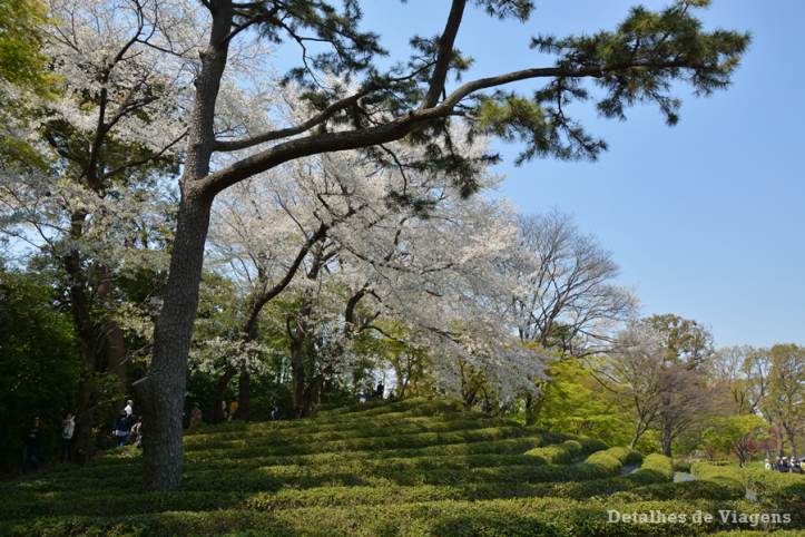 Tokyo east gardens Imperial Palace palacio imperial relatos roteiro viagem japao dicas 5.png