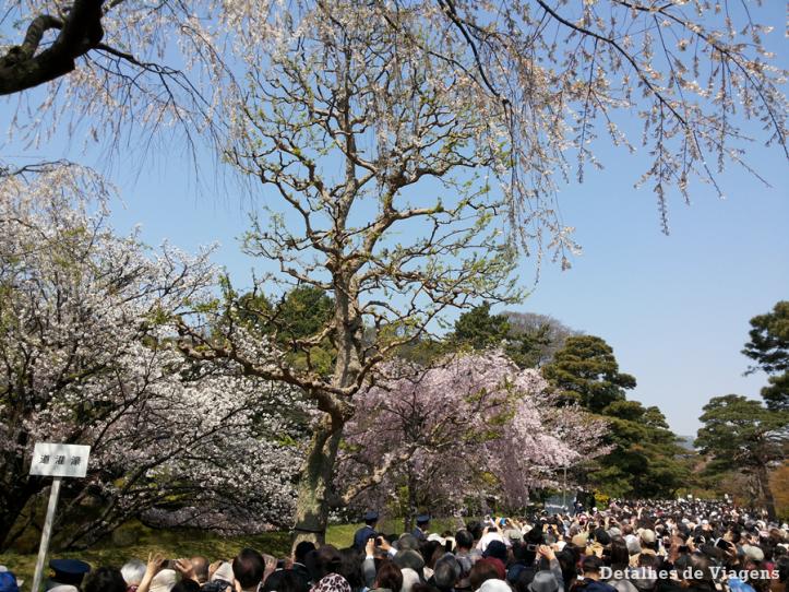 tokyo-imperial-palace-palacio-imperial-relatos-roteiro-viagem-japao-dicas-12