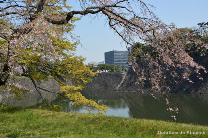 tokyo-imperial-palace-palacio-imperial-relatos-roteiro-viagem-japao-dicas-13