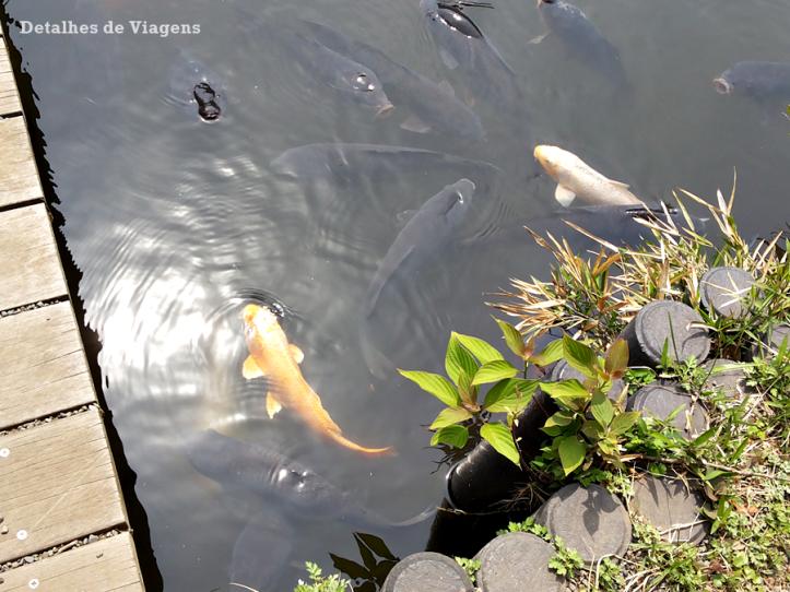 meiji jingu santuario inner garden jardim interior japao roteiro relatos viagem dicas o que fazer toquio 4.png
