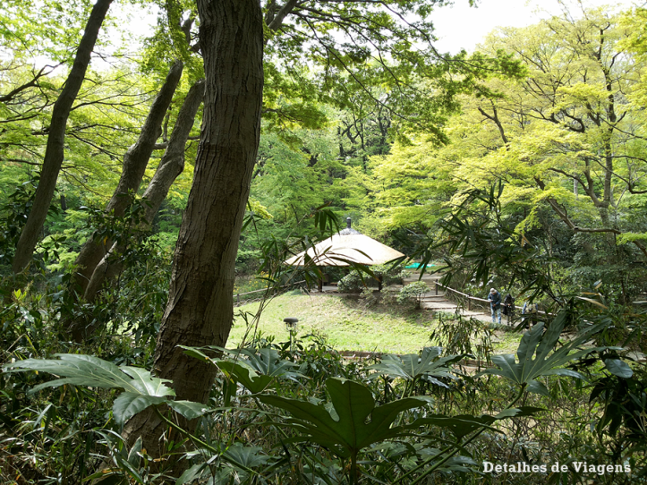 meiji jingu santuario inner garden jardim interior japao roteiro relatos viagem dicas o que fazer toquio 6.png