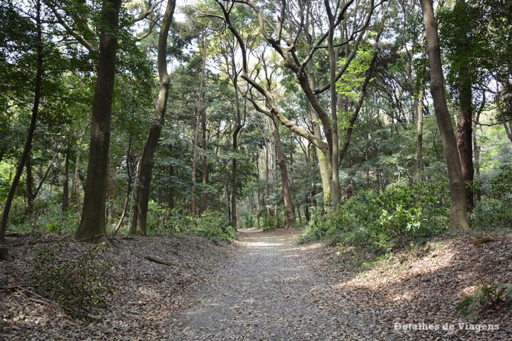 meiji jingu santuario japao roteiro relatos viagem dicas o que fazer toquio 14.png