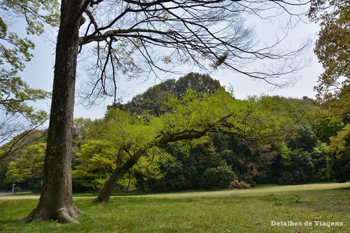 meiji jingu santuario japao roteiro relatos viagem dicas o que fazer toquio 17.png