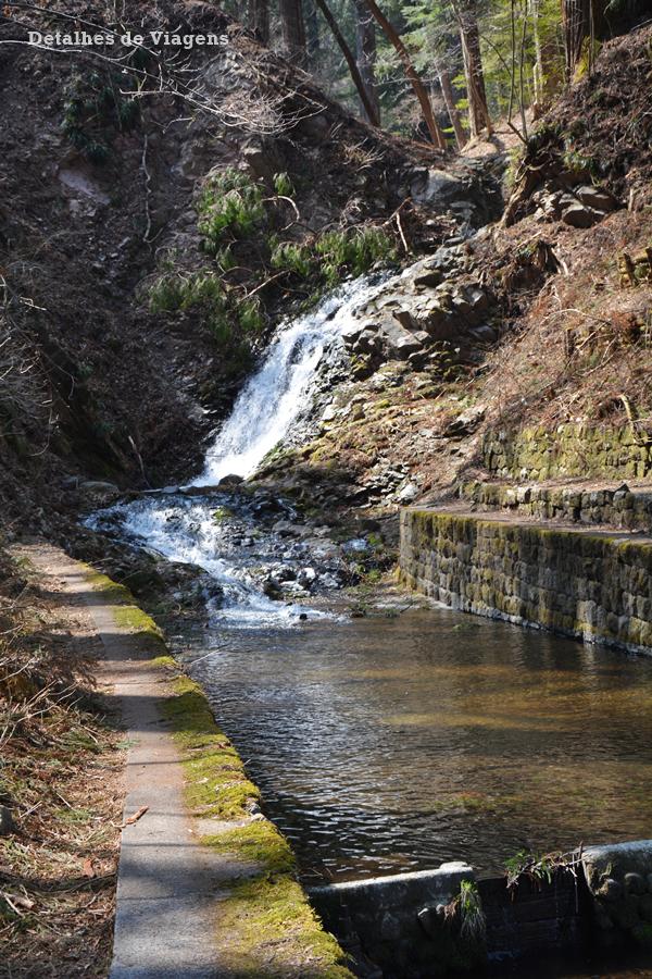 nikko national park japao roteiro relato viagem dicas 3.png