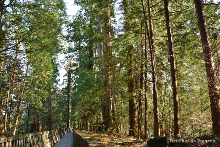 nikko toshogu shrine santuario relatos viagem japao roteiro dicas 16.png