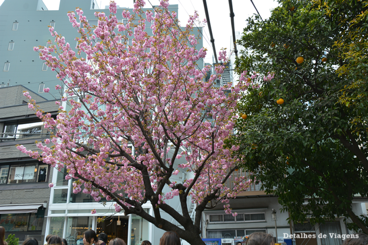 ruas tokyo toquio roteiro viagem relatos dicas 2.png