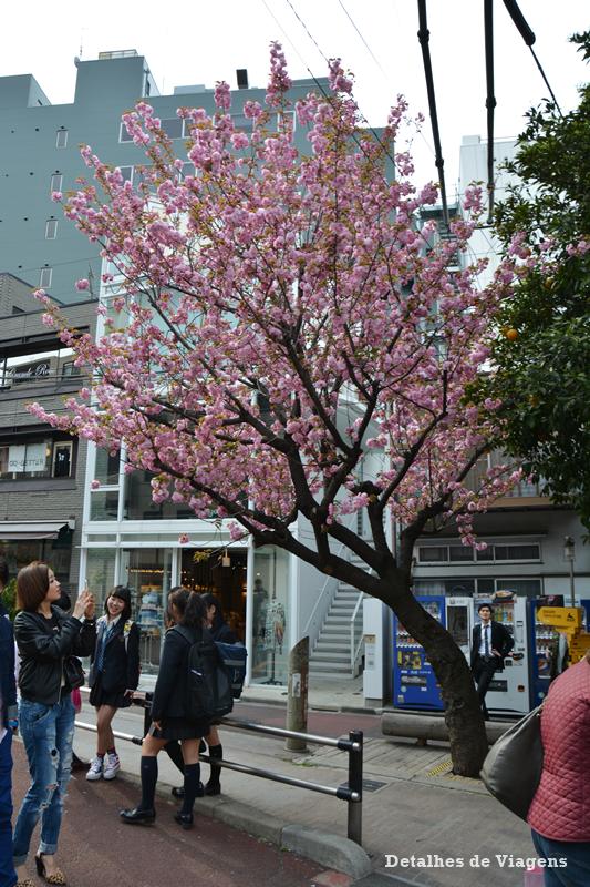 ruas tokyo toquio roteiro viagem relatos dicas.png