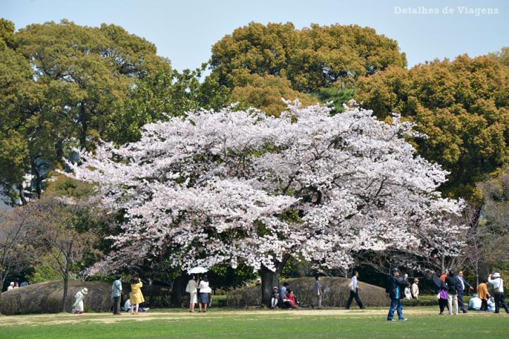 tokyo-east-gardens-imperial-palace-palacio-imperial-sakuras-cerejeiras-relatos-roteiro-viagem-japao-dicas