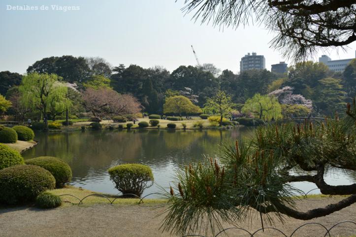 tokyo parque shinjuku gyoen sakuras cerejeiras toquio relatos viagem japao roteiro dicas 3.png