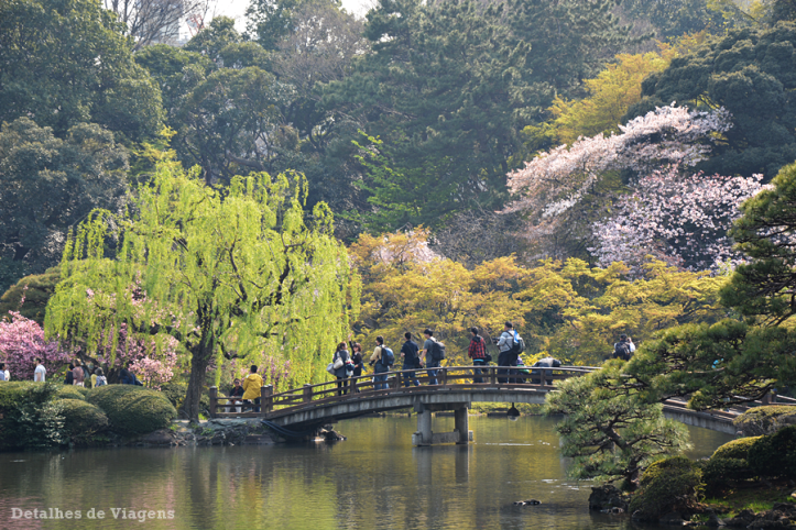 tokyo parque shinjuku gyoen sakuras cerejeiras toquio relatos viagem japao roteiro dicas 4.png