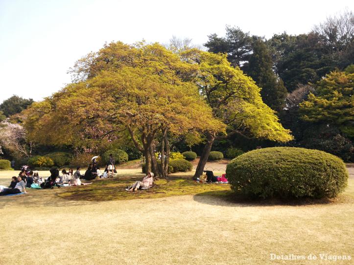 tokyo parque shinjuku gyoen toquio relatos viagem japao roteiro dicas 10.png