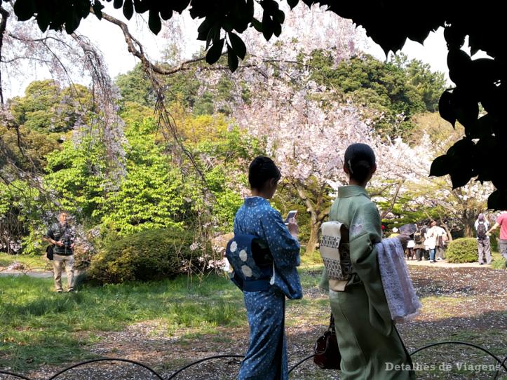 tokyo parque shinjuku gyoen toquio relatos viagem japao roteiro dicas 11.png