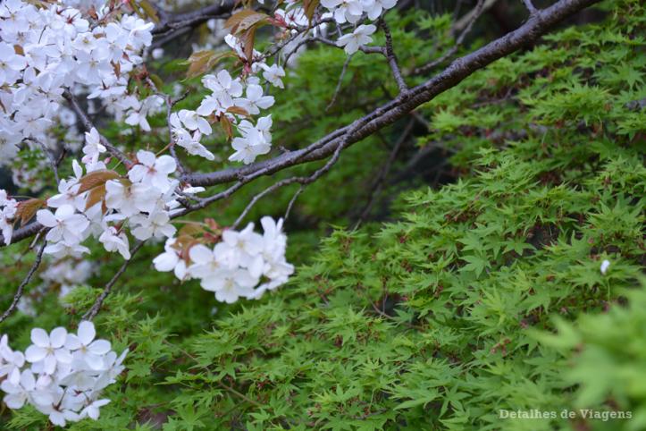 tokyo parque shinjuku gyoen toquio relatos viagem japao roteiro dicas 14.png