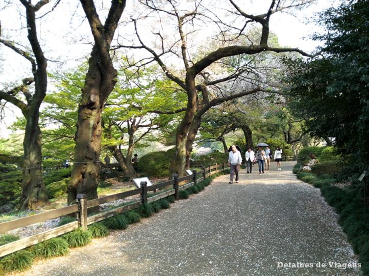 tokyo parque shinjuku gyoen toquio relatos viagem japao roteiro dicas 21.png