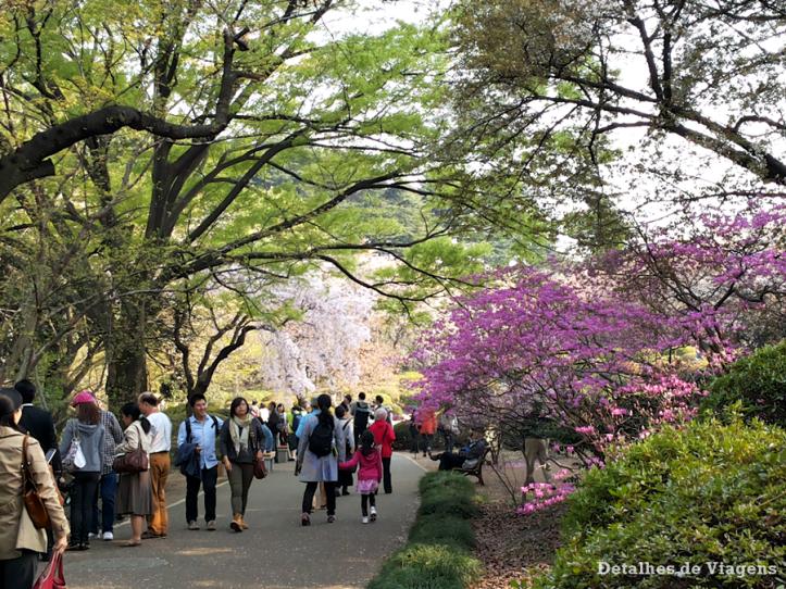 tokyo parque shinjuku gyoen toquio relatos viagem japao roteiro dicas 22.png