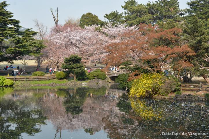 tokyo parque shinjuku gyoen toquio relatos viagem japao roteiro dicas 24.png