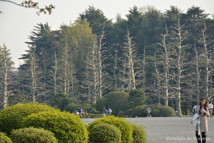 tokyo-parque-shinjuku-gyoen-toquio-relatos-viagem-japao-roteiro-dicas-29