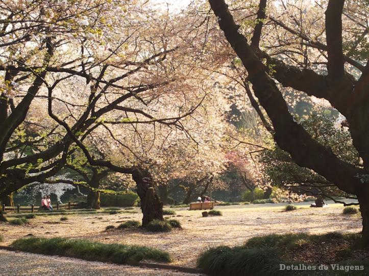 tokyo parque shinjuku gyoen toquio relatos viagem japao roteiro dicas 32.png