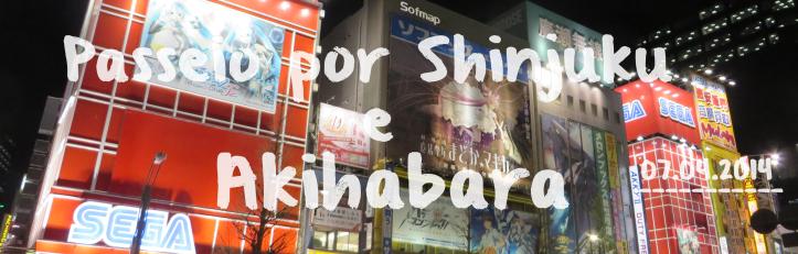 tokyo roteiro dicas relatos viagem japao 14 dias.png