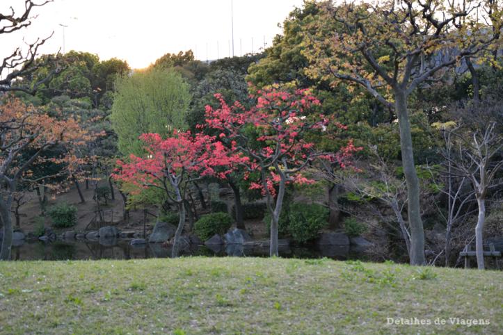 tokyo sumida park relatos viagem toquio japao roteiros dicas 2.png